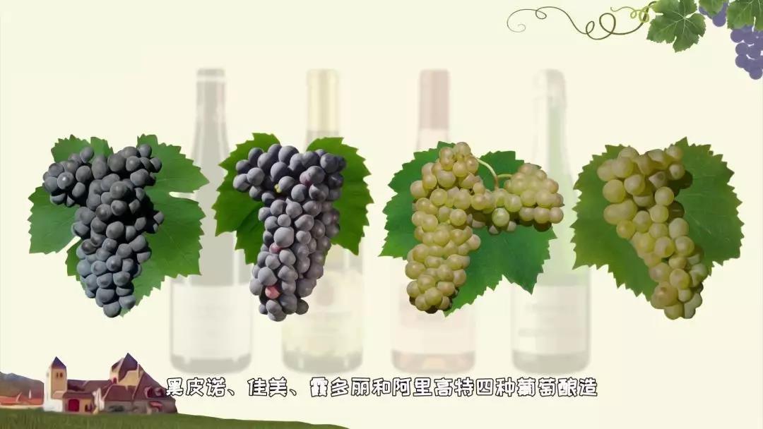 勃艮第葡萄酒分级4.jpg