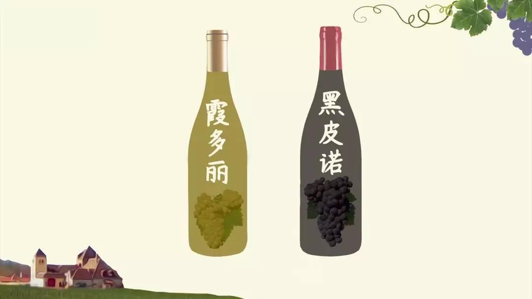 勃艮第葡萄酒分级2.jpg